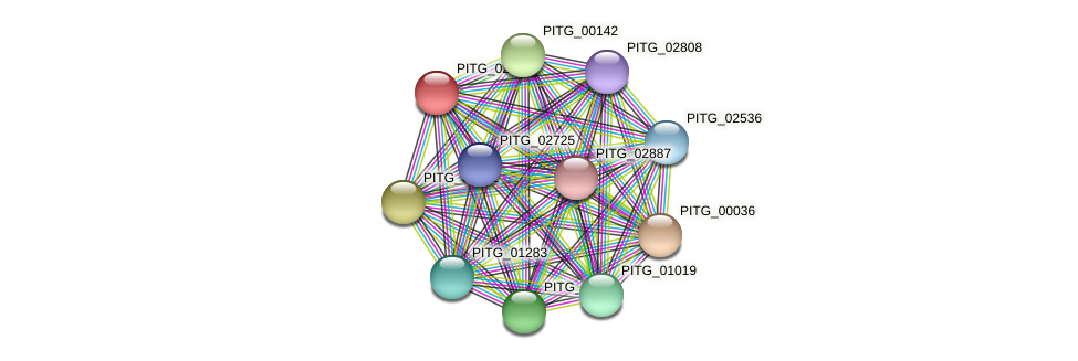 PITG_02450 protein (Phytophthora infestans) - STRING interaction network