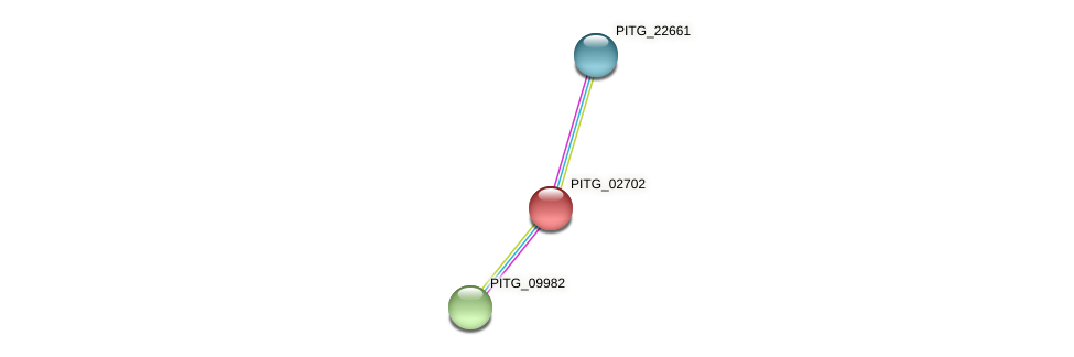 PITG_02702 protein (Phytophthora infestans) - STRING interaction network