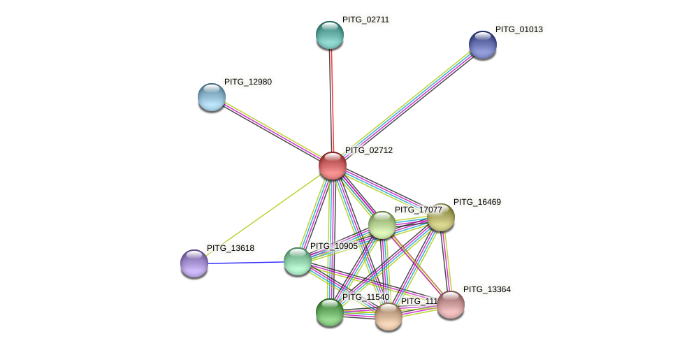 PITG_02712 protein (Phytophthora infestans) - STRING interaction network
