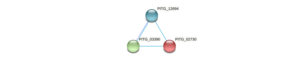 PITG_02730 protein (Phytophthora infestans) - STRING interaction network