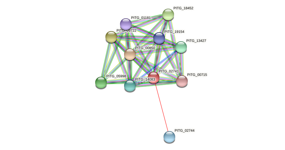 PITG_02741 protein (Phytophthora infestans) - STRING interaction network