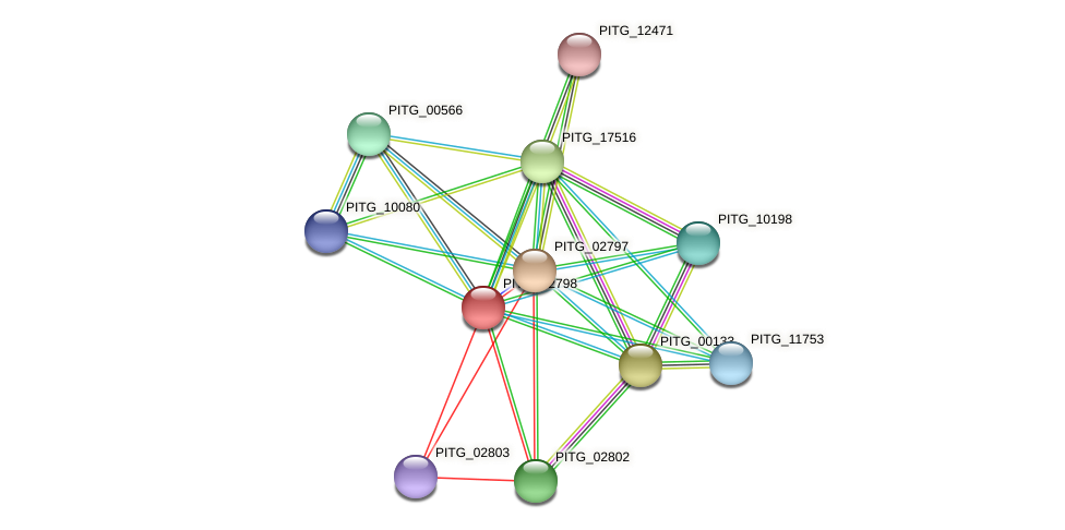 PITG_02798 protein (Phytophthora infestans) - STRING interaction network