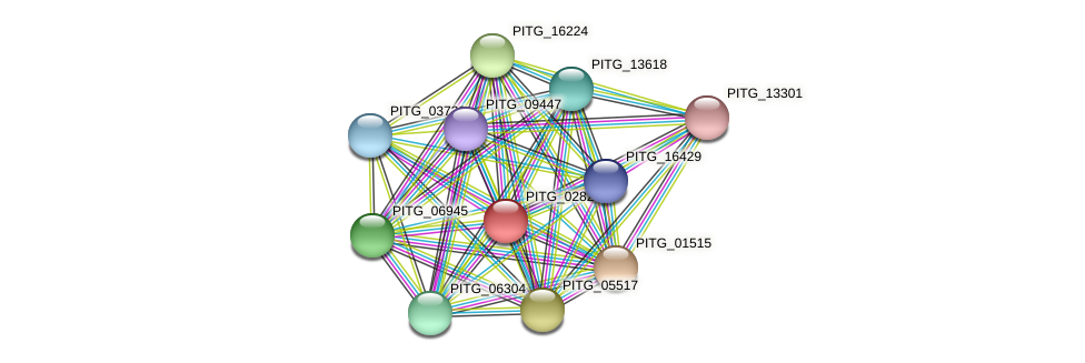 PITG_02827 protein (Phytophthora infestans) - STRING interaction network