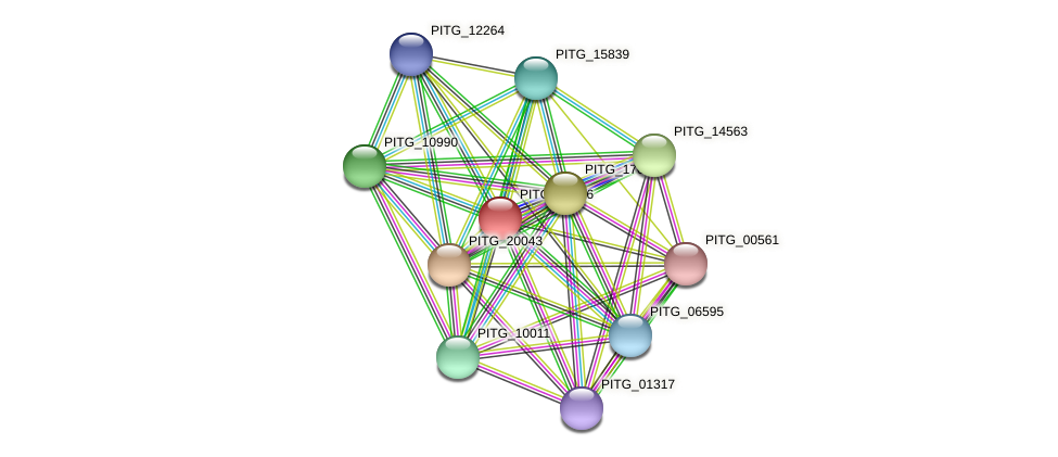 PITG_02846 protein (Phytophthora infestans) - STRING interaction network