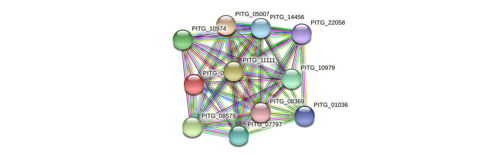 PITG_02921 protein (Phytophthora infestans) - STRING interaction network