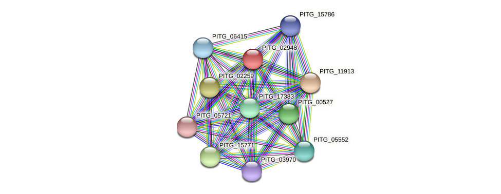 PITG_02948 protein (Phytophthora infestans) - STRING interaction network