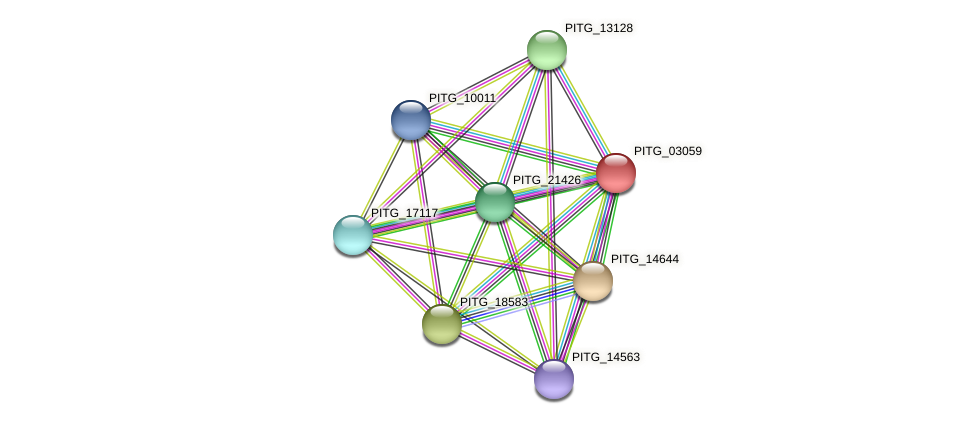 PITG_03059 protein (Phytophthora infestans) - STRING interaction network