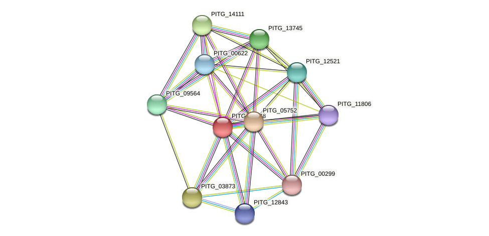 PITG_03148 protein (Phytophthora infestans) - STRING interaction network