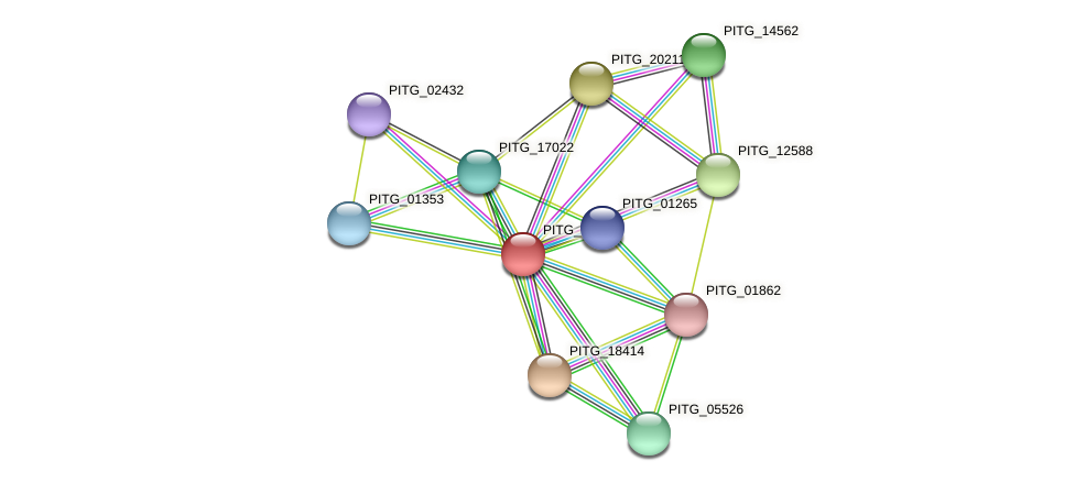 PITG_03200 protein (Phytophthora infestans) - STRING interaction network