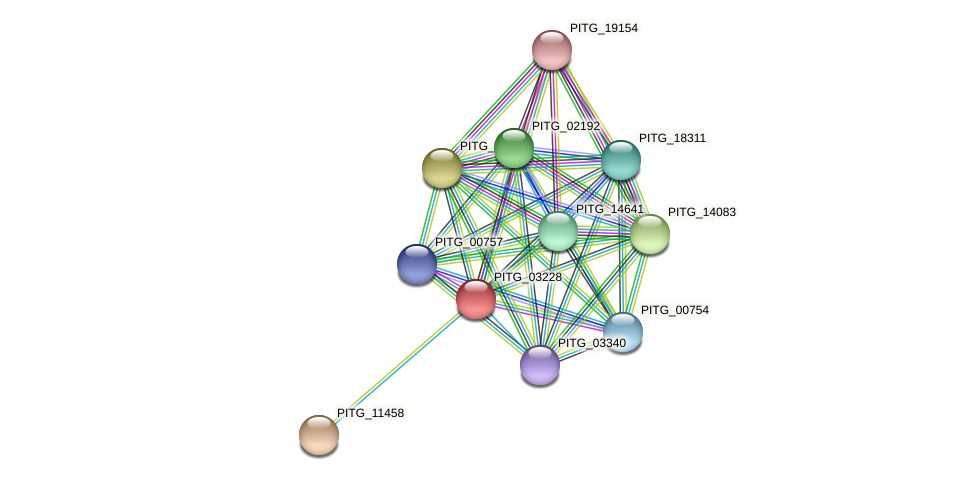 PITG_03228 protein (Phytophthora infestans) - STRING interaction network
