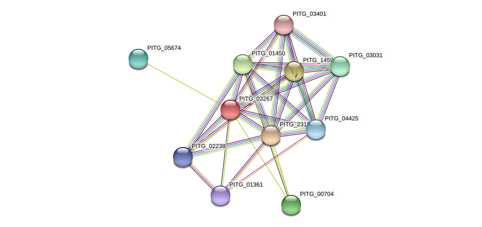 PITG_03267 protein (Phytophthora infestans) - STRING interaction network