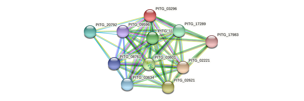 PITG_03296 protein (Phytophthora infestans) - STRING interaction network