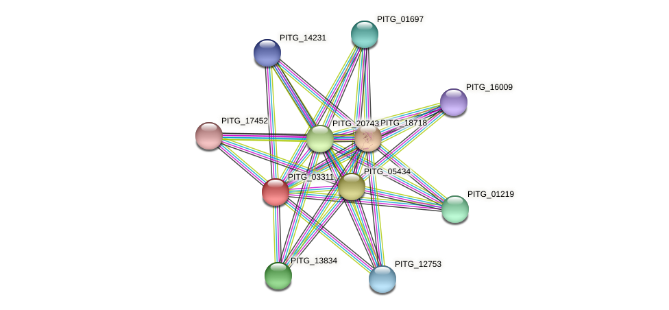 PITG_03311 protein (Phytophthora infestans) - STRING interaction network