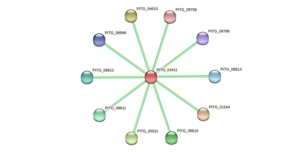 PITG_03411 protein (Phytophthora infestans) - STRING interaction network