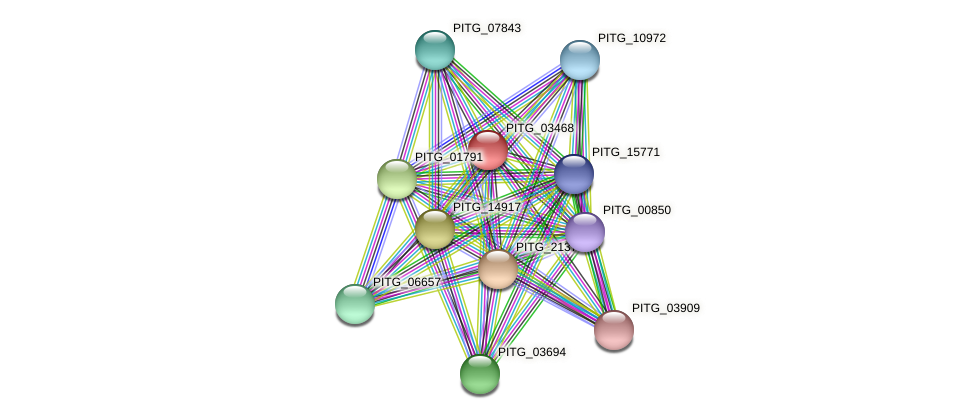 PITG_03468 protein (Phytophthora infestans) - STRING interaction network