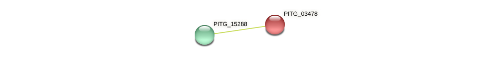 PITG_03478 protein (Phytophthora infestans) - STRING interaction network