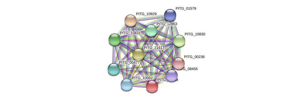 PITG_03489 protein (Phytophthora infestans) - STRING interaction network