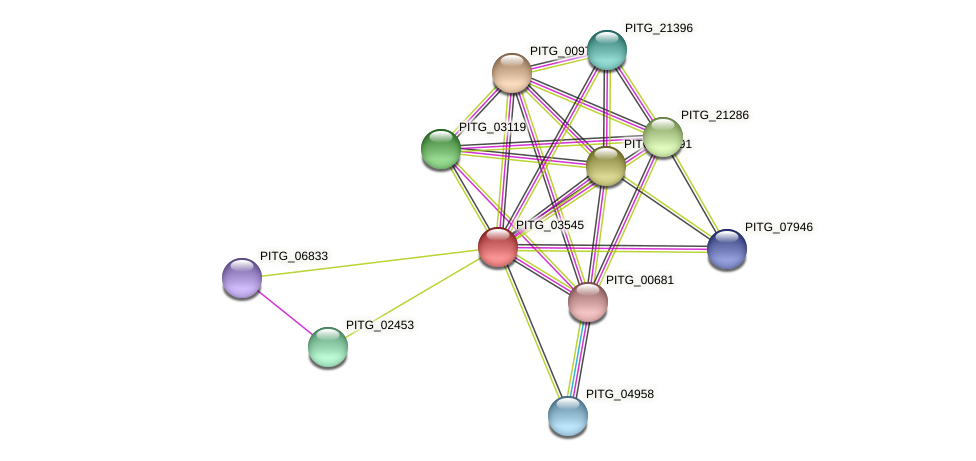 PITG_03545 protein (Phytophthora infestans) - STRING interaction network