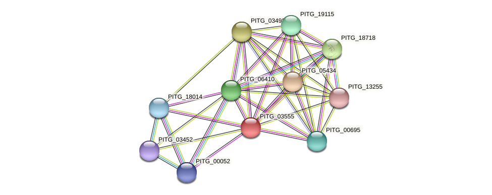 PITG_03555 protein (Phytophthora infestans) - STRING interaction network