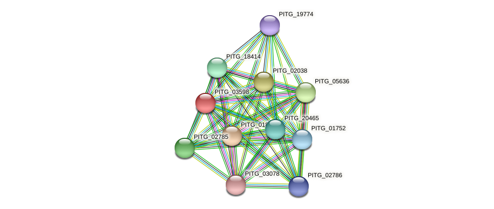 PITG_03598 protein (Phytophthora infestans) - STRING interaction network