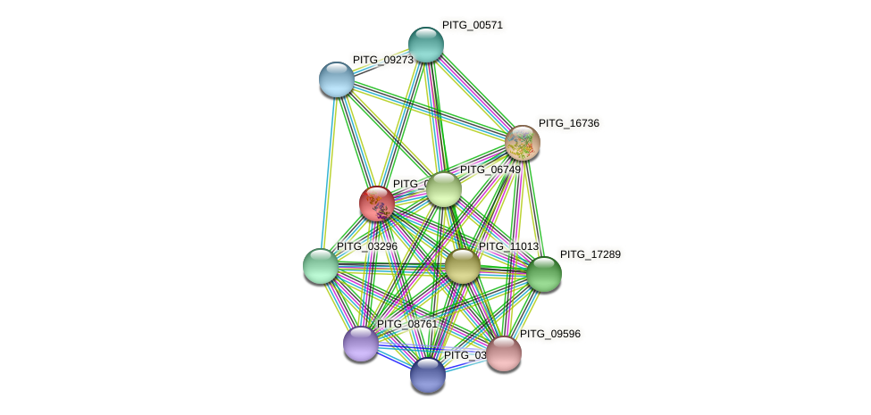 PITG_03601 protein (Phytophthora infestans) - STRING interaction network