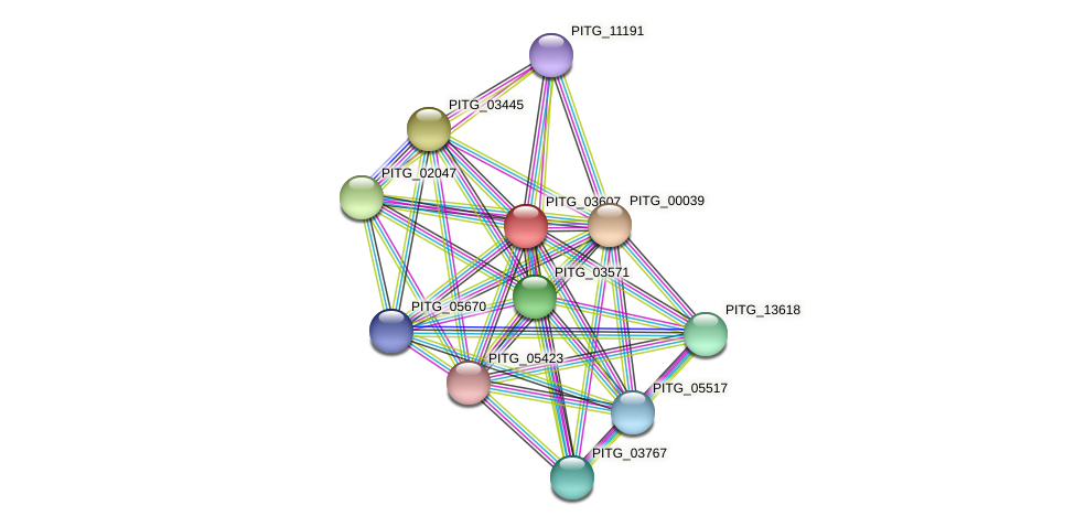 PITG_03607 protein (Phytophthora infestans) - STRING interaction network