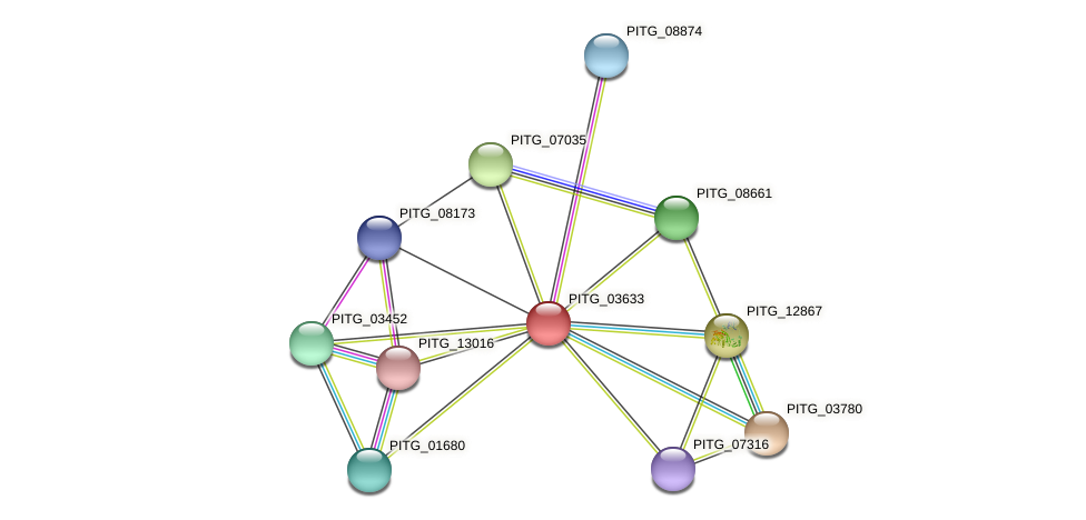PITG_03633 protein (Phytophthora infestans) - STRING interaction network