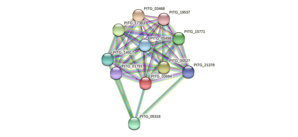 PITG_03694 protein (Phytophthora infestans) - STRING interaction network