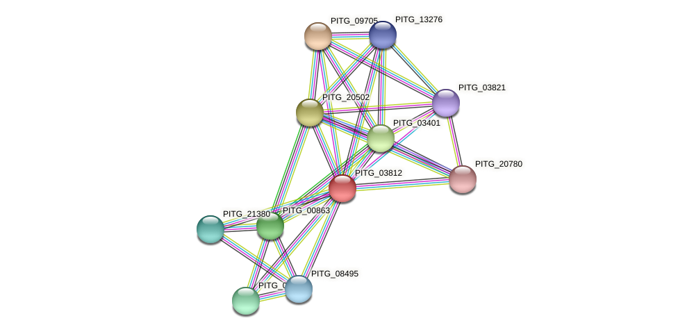 PITG_03812 protein (Phytophthora infestans) - STRING interaction network