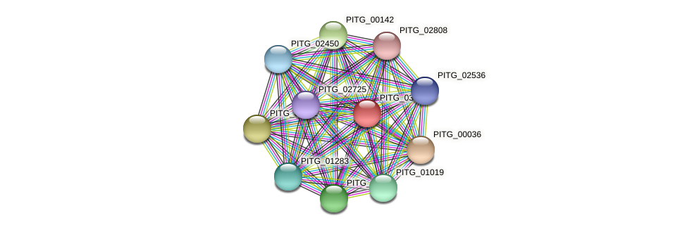 PITG_03876 protein (Phytophthora infestans) - STRING interaction network