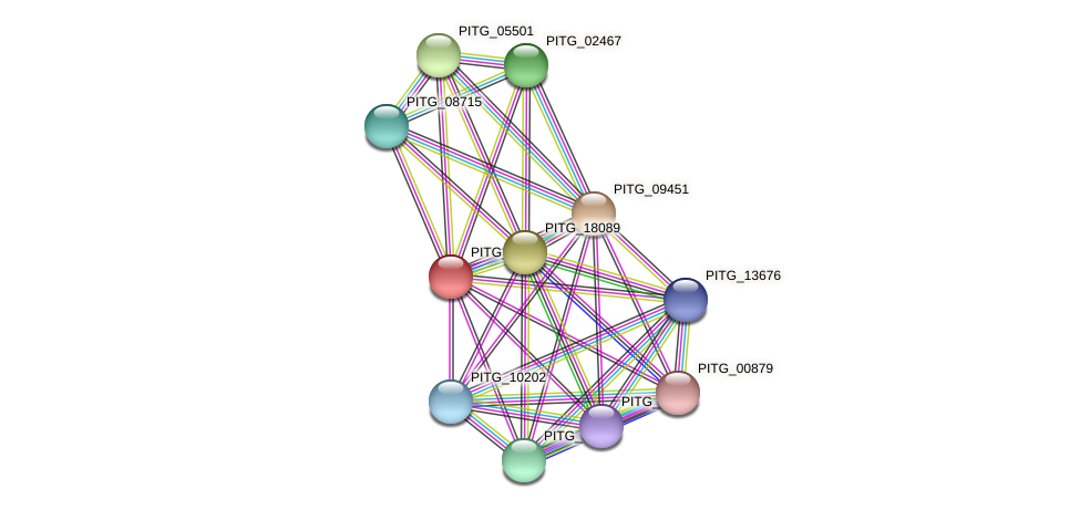 PITG_03906 protein (Phytophthora infestans) - STRING interaction network