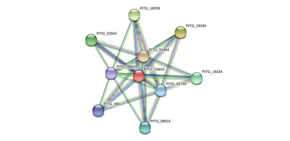 PITG_03924 protein (Phytophthora infestans) - STRING interaction network