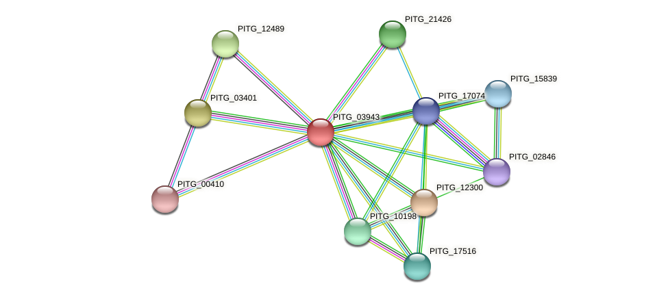 PITG_03943 protein (Phytophthora infestans) - STRING interaction network