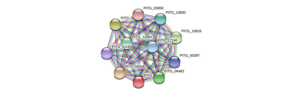 PITG_03993 protein (Phytophthora infestans) - STRING interaction network