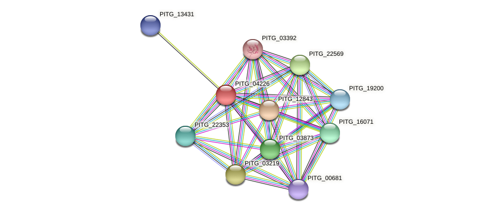 PITG_04225 protein (Phytophthora infestans) - STRING interaction network
