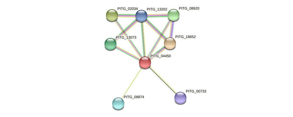 PITG_04450 protein (Phytophthora infestans) - STRING interaction network