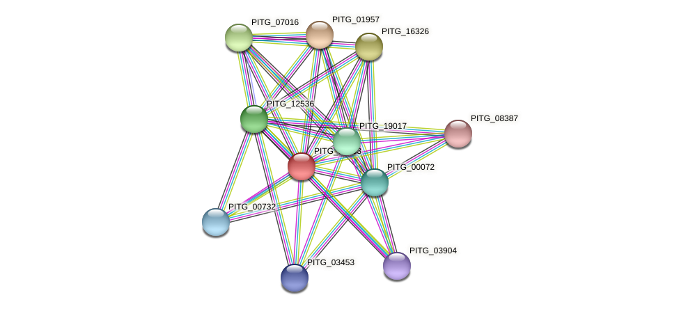 PITG_04603 protein (Phytophthora infestans) - STRING interaction network