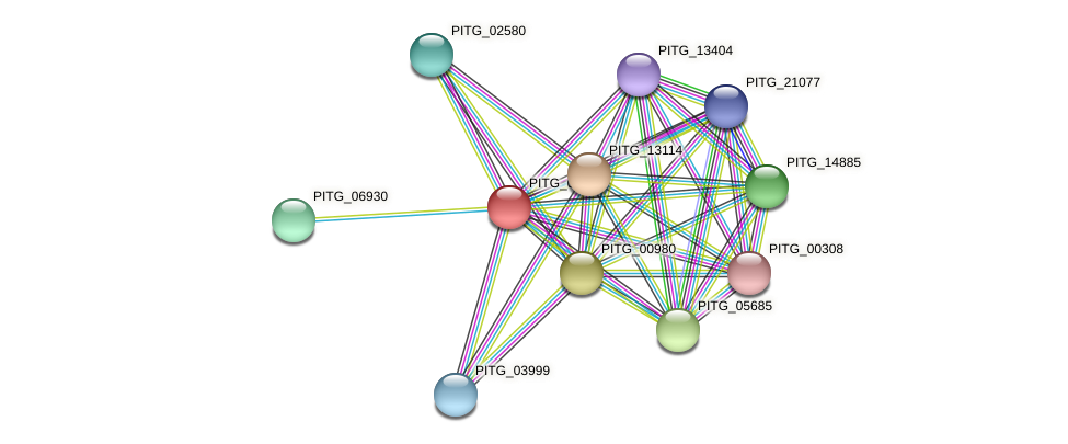 PITG_04644 protein (Phytophthora infestans) - STRING interaction network