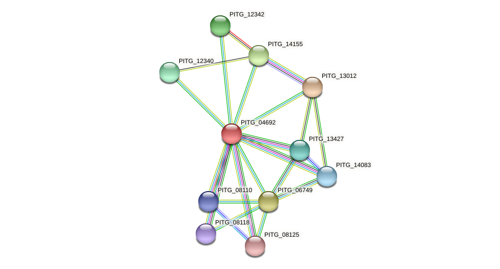 PITG_04692 protein (Phytophthora infestans) - STRING interaction network