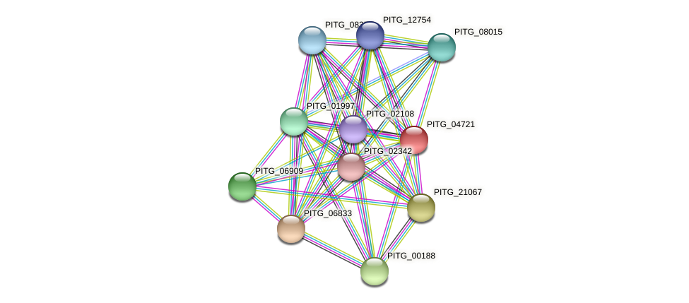 PITG_04721 protein (Phytophthora infestans) - STRING interaction network