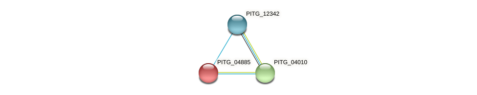 PITG_04885 protein (Phytophthora infestans) - STRING interaction network