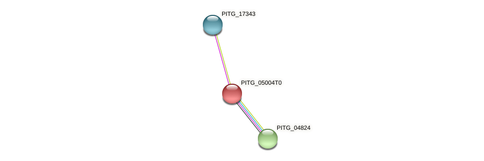 PITG_05004 protein (Phytophthora infestans) - STRING interaction network