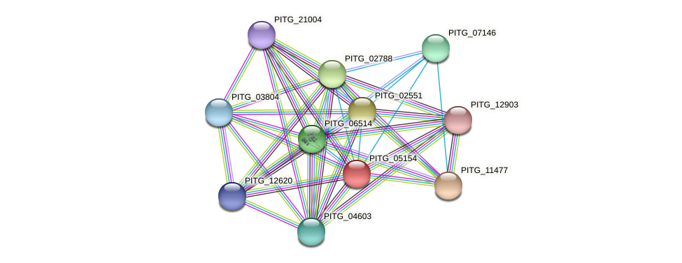 PITG_05154 protein (Phytophthora infestans) - STRING interaction network