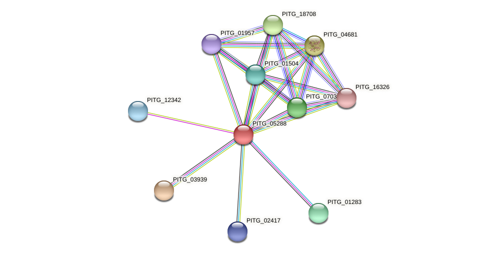 PITG_05288 protein (Phytophthora infestans) - STRING interaction network