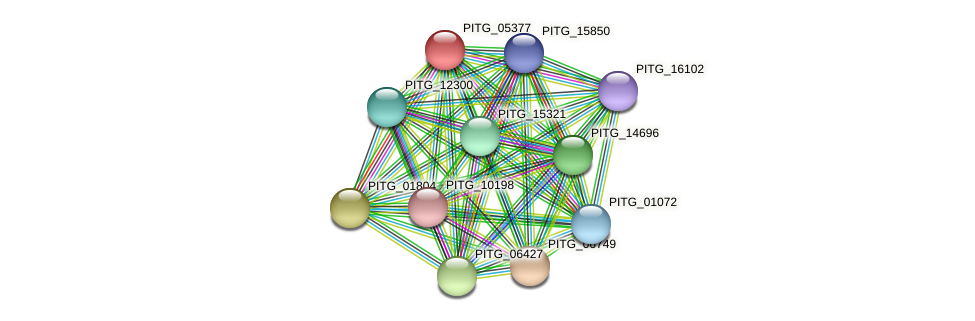 PITG_05377 protein (Phytophthora infestans) - STRING interaction network