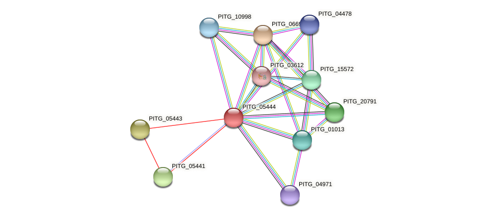 PITG_05444 protein (Phytophthora infestans) - STRING interaction network