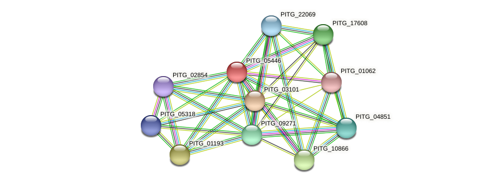 PITG_05446 protein (Phytophthora infestans) - STRING interaction network