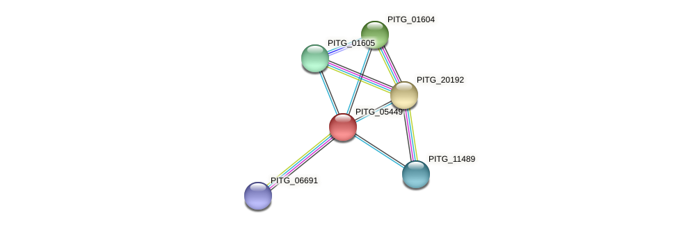 PITG_05449 protein (Phytophthora infestans) - STRING interaction network