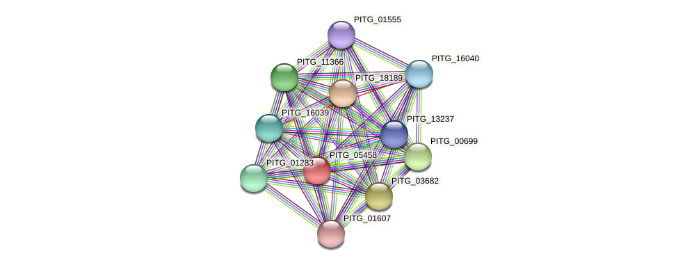 PITG_05458 protein (Phytophthora infestans) - STRING interaction network