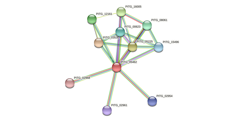 PITG_05462 protein (Phytophthora infestans) - STRING interaction network